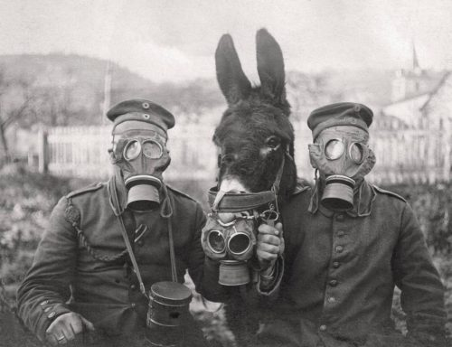 A+Donkey+and+two+German+soldiers+wearing+gas+masks+during+World+War+I,+1917